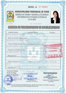 Licencia Puno
